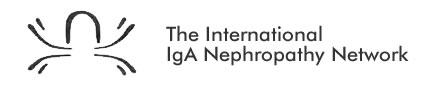 The International Iga Nephropathy Network